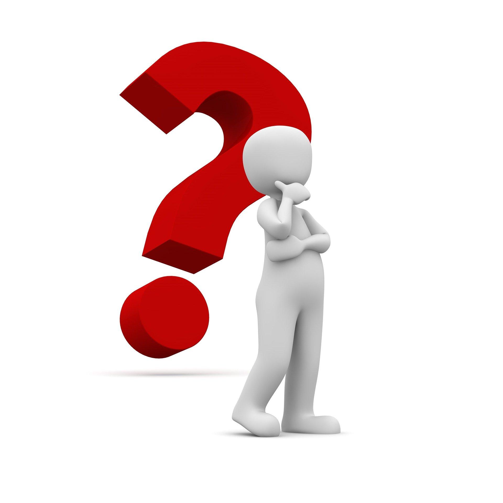 Чи може директор бути головою тендерного комітету або уповноваженою особою?