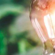 Зміна ціни електричної енергії на РДН та ВДР за січень 2021 року